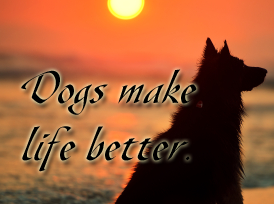 dogs-make-life-better-squar