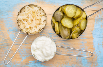 sauerkraut-yogurt-pickle-cucumbers