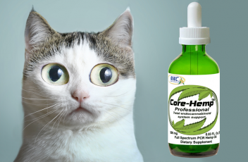 core-hemp-oil