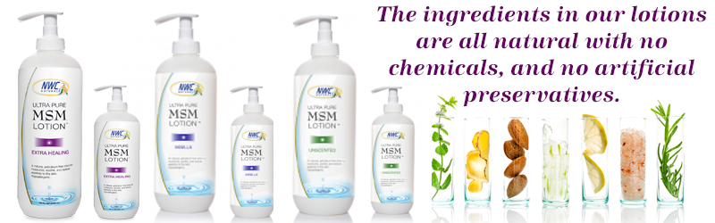 MSM Lotion and Muscle Rub