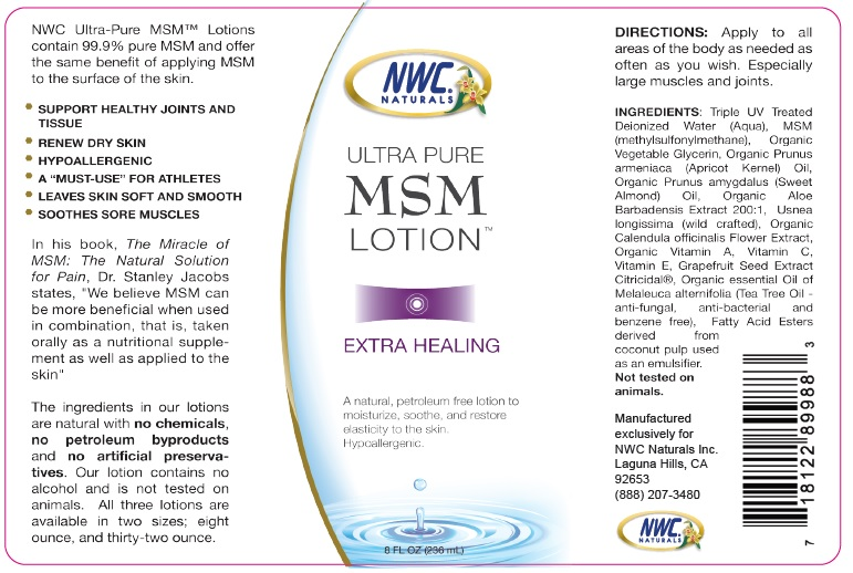 8 Ounce MSM Lotion