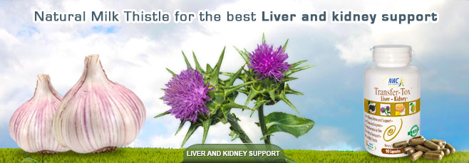 Liver and Kidney Support