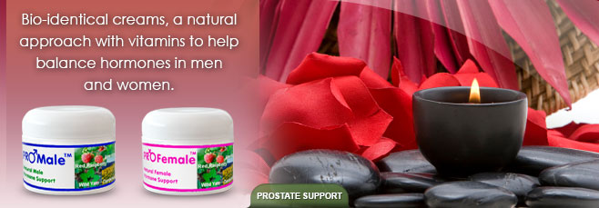 Male Prostate Support